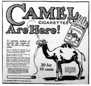 Camel Advert